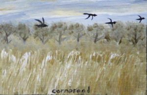 Cornbread, Crows Flying across a Field